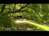 Des électrosensibles (EHS) dans un camping dénué d'ondes électromagnétiques type portable - JT TF1 (20h) - 21/08/2009