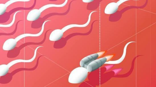 """""""Pour quelles raisons le sperme fait-il grise mine ?"""" - FranceTvInfo - 06/12/2012"""