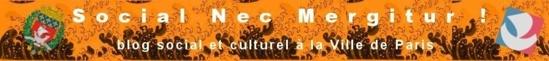 """""""La RFID dans les bibliothèques : Une technologie plus rapide, plus pratique mais pas moins contraignante."""" - Blog Social et Culturel de la Ville de Paris - 15/01/2013"""