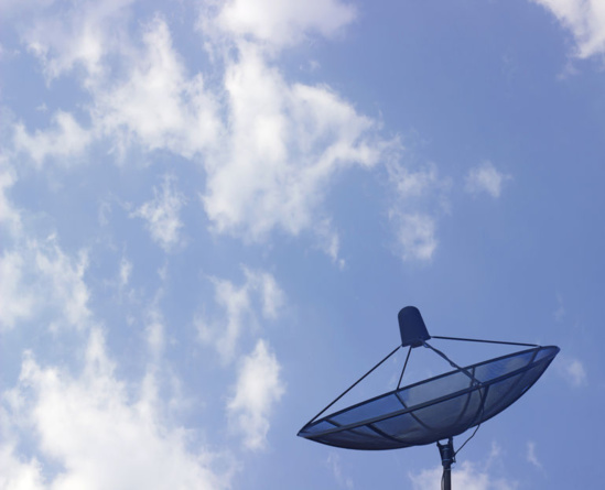 Pour Robin des Toits, les ondes hertziennes sont nocives. Photo DR/