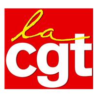 'Ondes électromagnétiques : Le CHSCT vote l'application de la loi Abeille dans les espaces jeunesse des bibliothèques parisiennes' - CGT - 06/07/2015