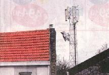 Pour le GRAPPE, le brouillard électromagnétique crée par le réseau sans fil constitue une pollution considérale - PH. R. MILUTIN