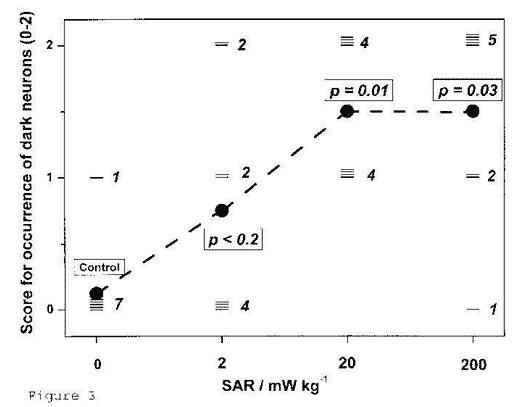 Salford et al. 2003 - 'Dégâts aux cellules nerveuses de cerveaux de mammifères après exposition à des micro-ondes de téléphones mobiles GSM'