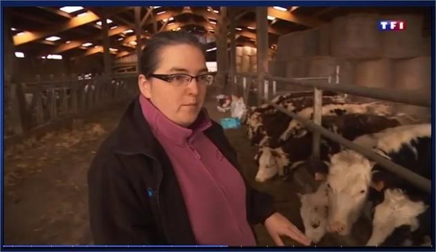 Depuis décembre 2014, le champ électromagnétique d'une antenne-relais perturbait une exploitation de vaches laitières de Normandie. (© Le Pays d'Auge)