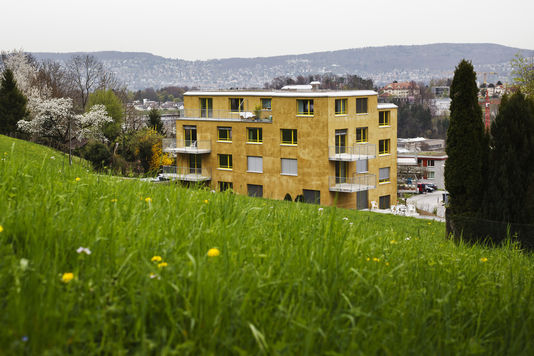 Le premier immeuble anti-allergène d'Europe a été achevé en décembre 2013, à Zürich. | AFP/MICHAEL BUHOLZER
