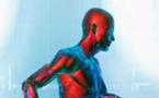 'Le cerveau victime d'une guerre des ondes ?' : Le Monde de l'Intelligence - Avril - Juin 2008