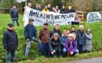 A Pluvigner, ils ne veulent pas d'une antenne relais sur la zone humide - actu.fr/bretagne - 06/03/2019