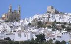 La toute première ville à l'unanimité débarrassée des champs électromagnétiques est espagnole - 2012