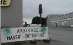 Colleville-Montgomery. Un arbre factice pour une vraie antenne relais - ouest-france.fr - 17/12/2019