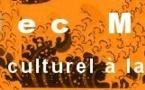 """""""Santé au travail: Des syndicalistes sensibles aux effets des ondes électromagnétiques !"""" - Blog social et Culturel de la Ville de Paris - 25/01/2013"""